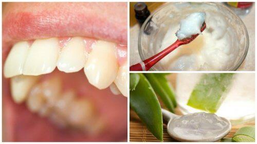 Elimine a placa bacteriana com estes interessantes remédios naturais