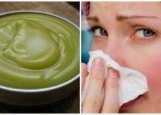 Prepare um unguento natural para descongestionar as vias respiratórias