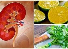 Cálculos renais: xarope de limão e salsa para combatê-los