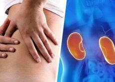 Sintomas de doença nos rins