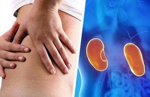 8 sintomas precoces que nos alertam sobre o mau funcionamento dos rins