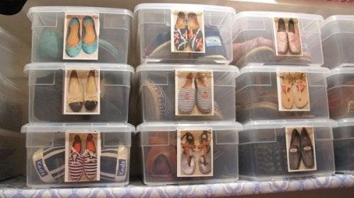 Caixas para sapatos