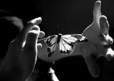 Acariciar com a alma para a intimidade da nudez emocional