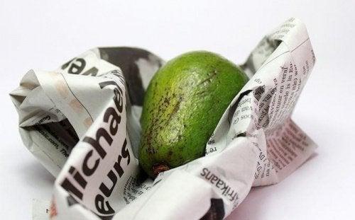 Como conversar os abacates em folhas de jornal