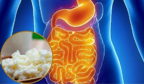 Síndrome de supercrescimento bacteriano: sintomas e alimentação