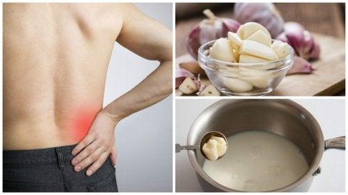 Receita infalível: leite com alho para aliviar irritação no nervo ciático