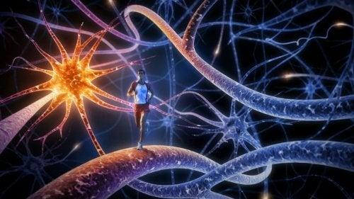 Os 8 melhores exercícios para treinar e aumentar a potência cerebral