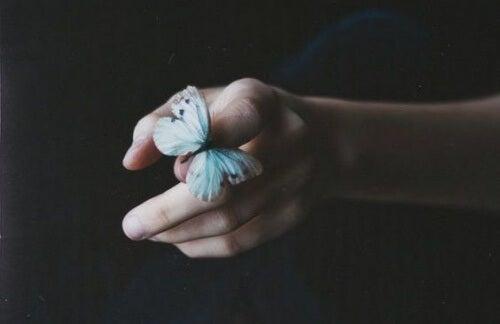 borboleta-pequena-representando-desapego
