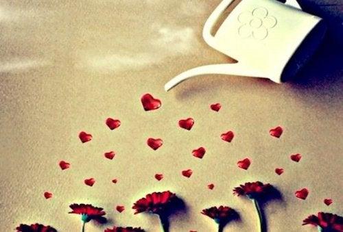 Corações simbolizando amor