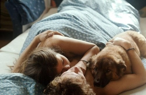 relacionamento-animais-de-estimação