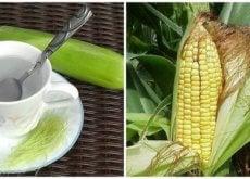 9 benefícios do cabelo de milho que você com certeza ainda não conhece