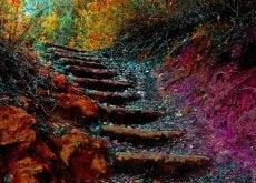 A escada da vida: como se superar no dia a dia em 5 passos