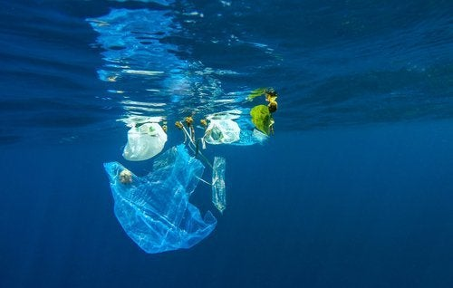 Plástico contaminando a água