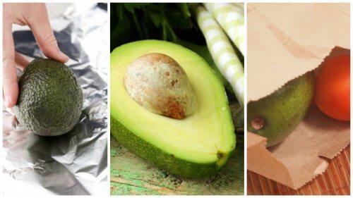 5 truques para amadurecer um abacate em minutos