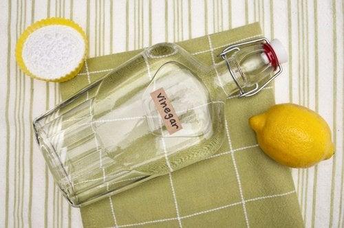 Vinagre branco para limpar