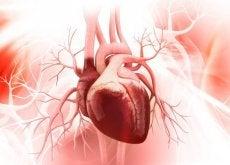 7 dicas para ter um coração saudável