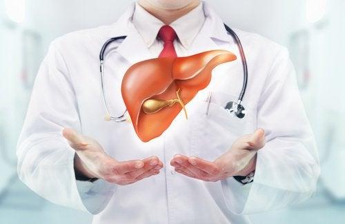 Doutor explicando problemas de colesterol sobre o fígado