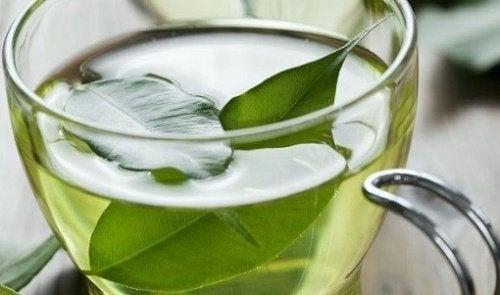 Chá verde para evitar o câncer de pele