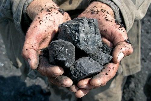 Carvão para eliminar a umidade