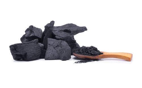 Carvão no jardim