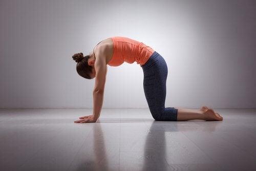 Mulher alongando para evitar dores musculares