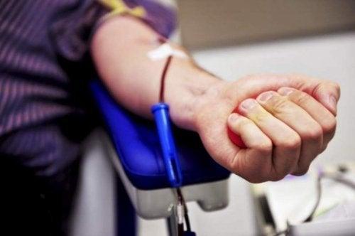 Como se converter em um doador de medula óssea