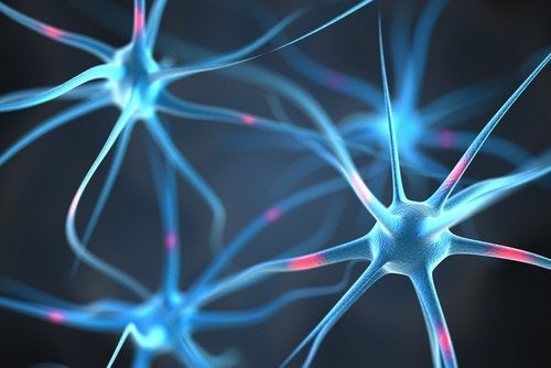 conexoes-neuronais