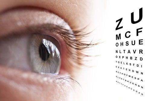 Exame da vista para prevenir o glaucoma