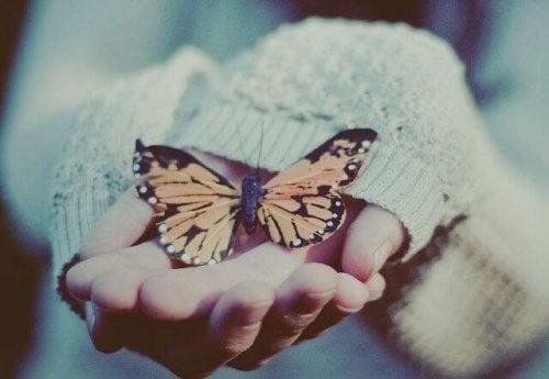 Pessoa segurando borboleta