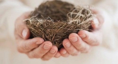Síndrome do ninho vazio: quando a solidão invade o lar