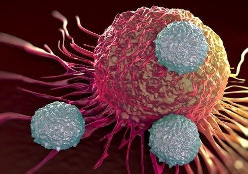 tumores tratados com crioablação