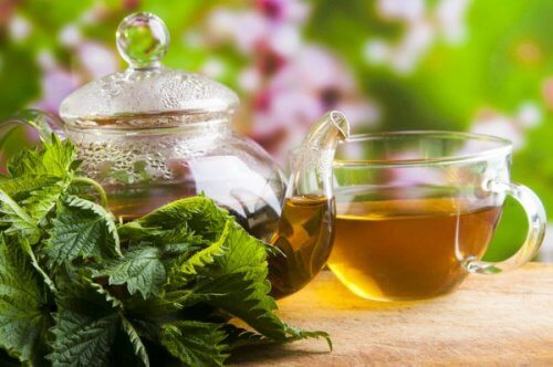 Chá de urtiga para tratar a rinite alérgica