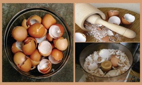 6 interessantes remédios naturais com casca de ovo