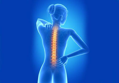 Ilustração da coluna vertebral