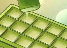 Descubra os benefícios de congelar aloe vera. Impressionante!