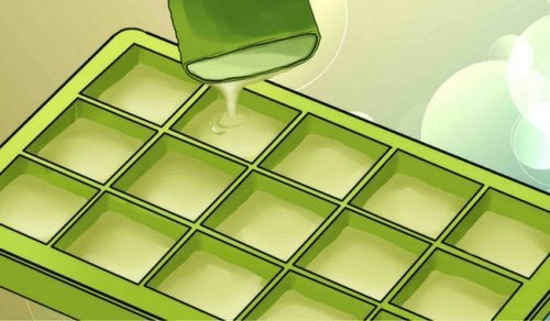 Descubra os benefícios de congelar aloe vera