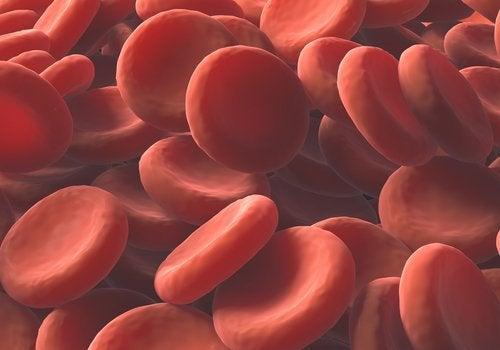 Remédios naturais para aumentar a quantidade de glóbulos vermelhos