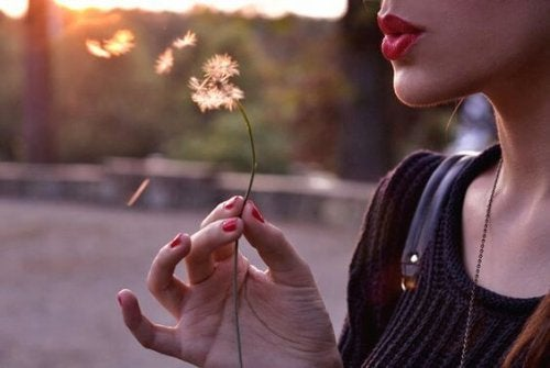 Leis da vida: viva sem aparecer, ame sem depender e fale sem ofender