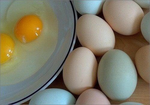 Ovos no prato