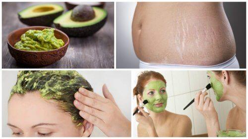 6 aplicações cosméticas do abacate