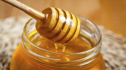 Mel de abelha para tratar a gastrite