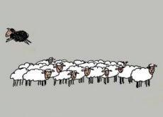 4 razões pelas quais ser a ovelha negra é saudável