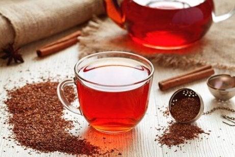 Chá de Rooibos para aumentar as defesas