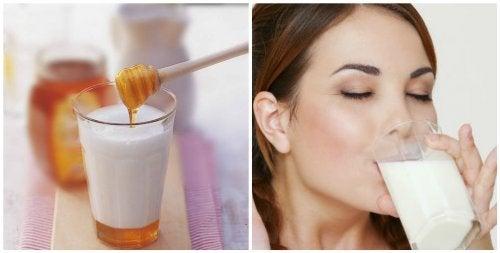 7 razões para tomar um copo de leite com mel antes de dormir