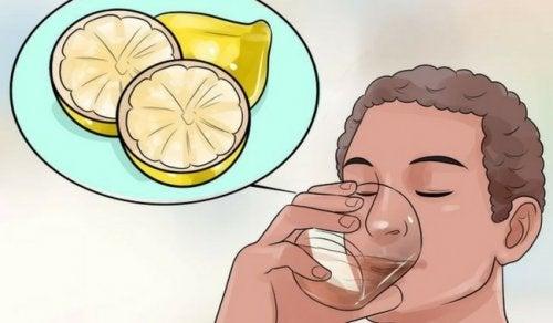 Bebidas desintoxicantes: benefícios para perder peso