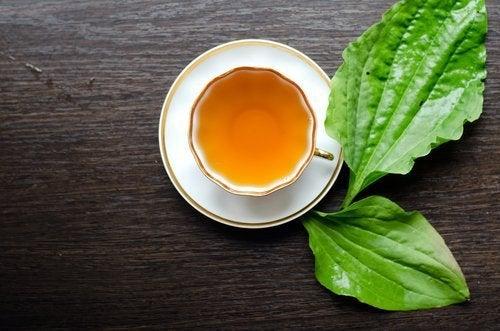 Chá feito com ervas laxantes