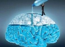5 maravilhosos efeitos que seu cérebro notará quando você beber água