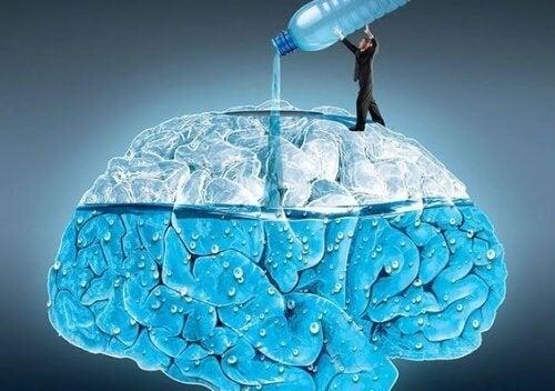 5 efeitos de beber água para cérebro