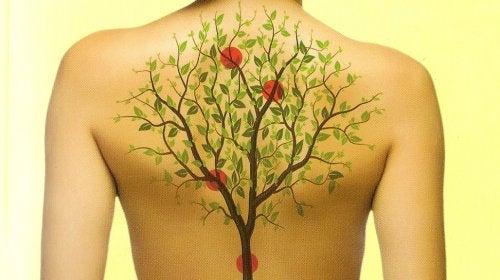 Como os órgãos do corpo se relacionam com as emoções