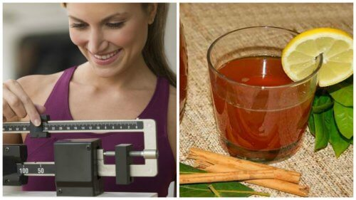Como preparar chá de canela e louro para perder peso